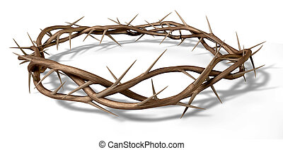 A Crown Of Thorns - Branches of thorns woven into a crown...