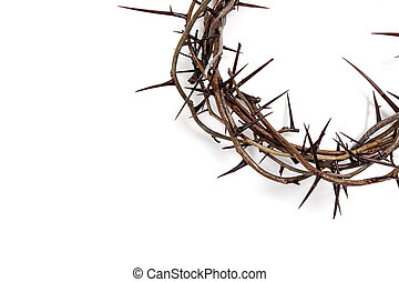 A crown of thorns on a white background. Easter theme
