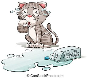 A crying cat - A cat crying over a spilt milk on a white...