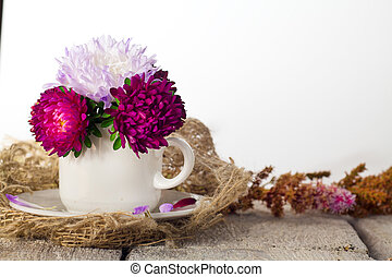 A cup of flower aster for decoration interior room. Pink beautiful flower on white table background.