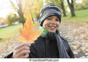 cute boy with autumn leaves in the park