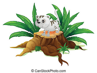 A cute cat on a stump with leaves