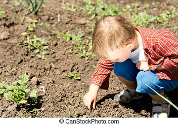 A cute kid looking for something in the garden