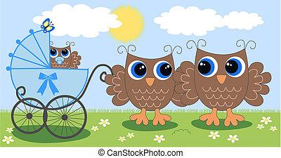 a cute little owl family -  baby boy announcement