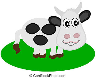 a dairy cow on grass