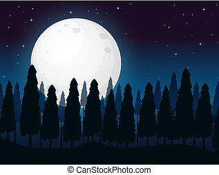 A Dark Full Moon Night