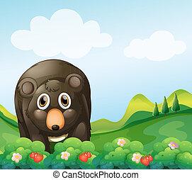 A dark gray bear in the garden