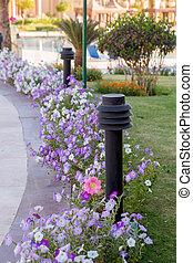 decorative lantern in the garden in summer