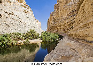 a deep gorge in desert  - a deep gorge in the Negev desert