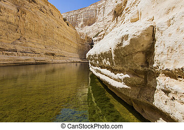 gorge in the Negev desert