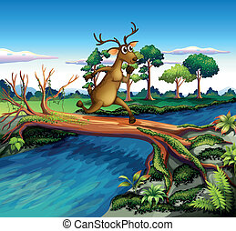 A deer crossing the river