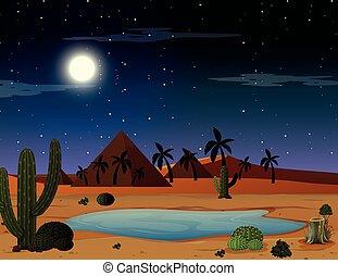 A desert night scene