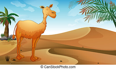 A desert with a lonely camel