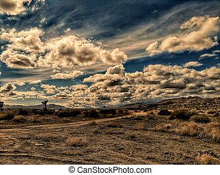 A dirt road in a scrubby California desert landscape.