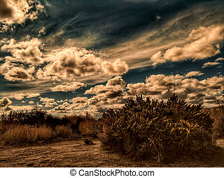 A dirt road in the California Mojave desert under stormy skies.