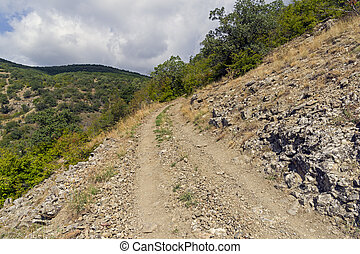 A dirt road on a steep mountain slope.