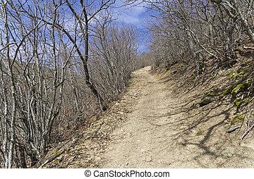 A dirt road on a steep slope. Crimea.