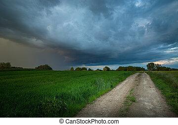 A dirt road through green fields and a huge rain cloud