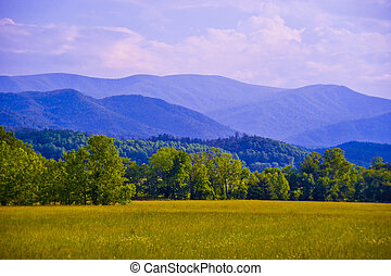 A distant view of the Blue Ridge Mountains on a relatively clear day