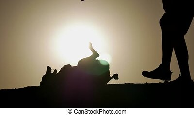 A dog and the owner as silhouette at sunrise