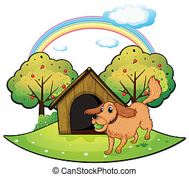A dog playing outside the doghouse near the apple tree