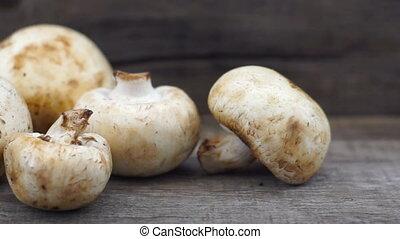 A dolly shot of Mushrooms
