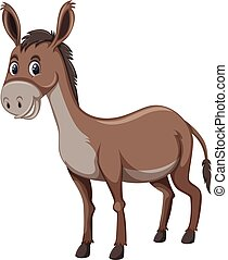 A donkey on white background