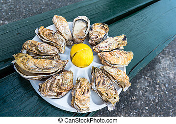 A dozen oysters on a plastic plate - A dozen oysters and a...
