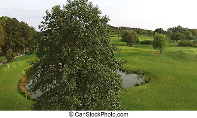 A drone flies over a green golf course. Wedding ceremony