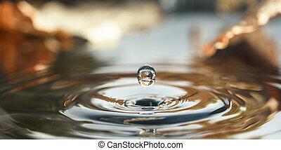 A drop of water, closeup