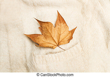 A dry leaf on a white wool sweater