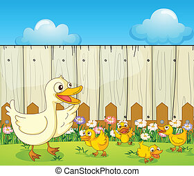 A duck and ducklings inside a fence