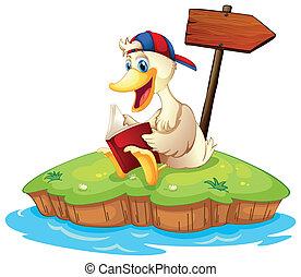 A duck reading beside the empty arrowboard
