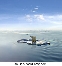a, eltart, jegesmedve