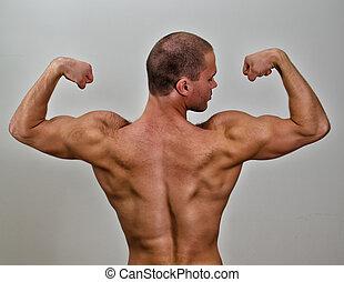 a, erős, testépítő, back., képben látható, szürke, háttér.