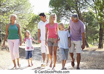 a, familie, mit, eltern, kinder, und, großeltern, spaziergang, durch, park