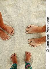 Family feet on the sand on the beach family