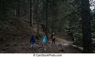 A family with children is walking along the slope of a dense forest.