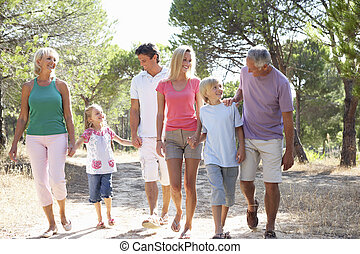 A family, with parents, children and grandparents, walk through park