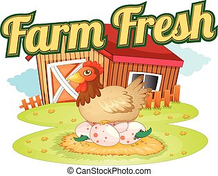 A farm fresh template showing a hen laying eggs on a white...