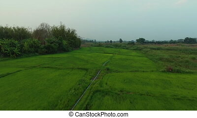 A farm in a valley - A high angle shot of a cultivated farm...