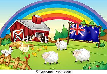 A farm with a rainbow and a framed flag of New Zealand