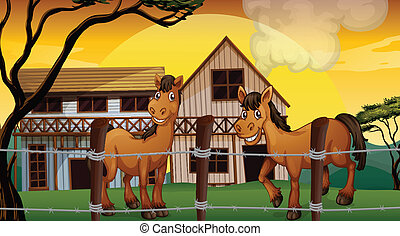 A farm with two horses
