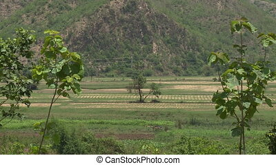 An establishing shot of a farmland in a valley close to the foot of a hill in Myanmar
