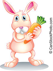 A fat bunny holding a carrot