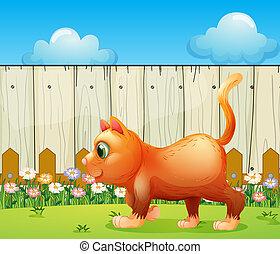 A fat cat at the backyard