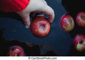 a female hand in a sweater takes out red autumn apples from the water, in a dark rustic tone
