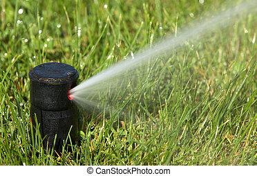a field in summer is a sprinkler watering
