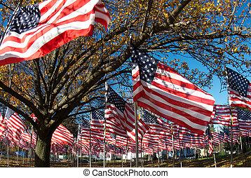 A field of american flags memoralizing veterans.