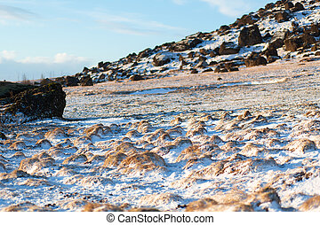 A field of frozen lava overgrown with moss at the foot of a mountain in Iceland in winter. Winter natural landscape